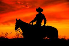 4.Cowboy-in-Silhouette-COPEN